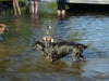 2012-08-19_badespass_heerstr_193