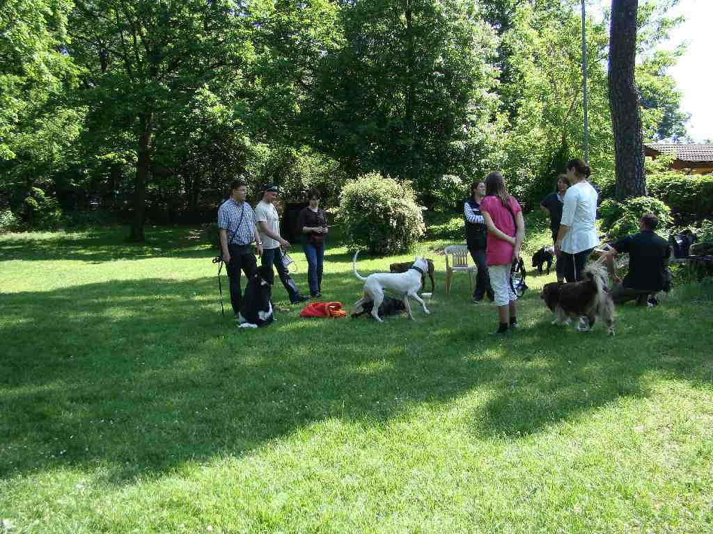 2012-05-20_hundetraining_19