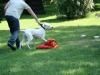 2012-05-20_hundetraining_20