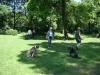 2012-05-20_hundetraining_61