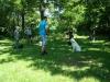 2012-05-20_hundetraining_77