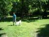 2012-05-20_hundetraining_79