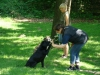 2012-05-20_hundetraining_85