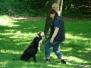 20.05.2012 Hundetraining
