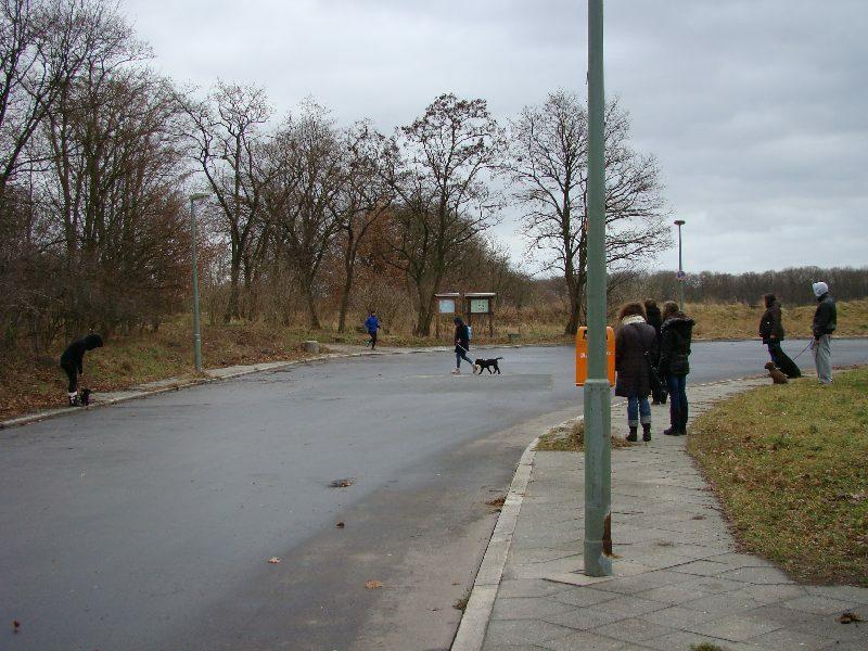 2012-01-22_hundetraining_08