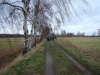 2012-01-22_hundetraining_01
