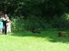 2012-07-22_hundetraining_077