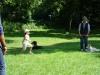 2012-07-22_hundetraining_080