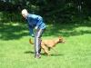 2012-07-22_hundetraining_096