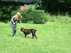 2012-07-22_hundetraining_105