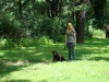 2012-07-22_hundetraining_122