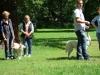 2012-07-22_hundetraining_130