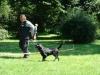 2012-07-22_hundetraining_135