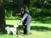 2012-07-22_hundetraining_145