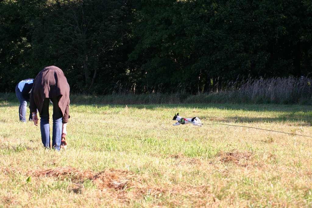 2012-09-23_hundetraining_009