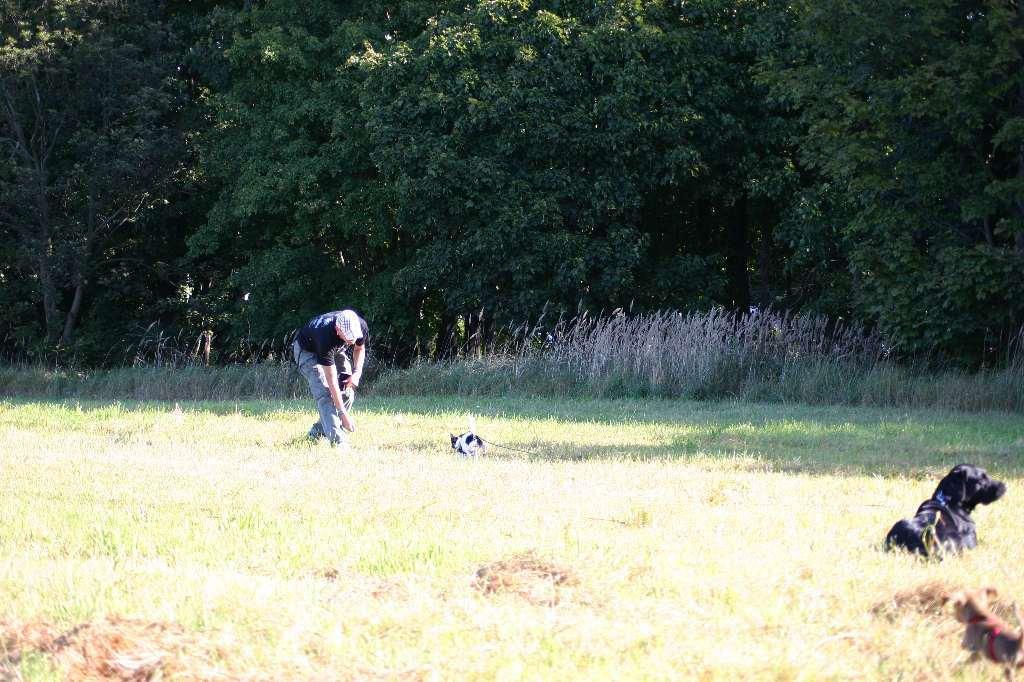 2012-09-23_hundetraining_010