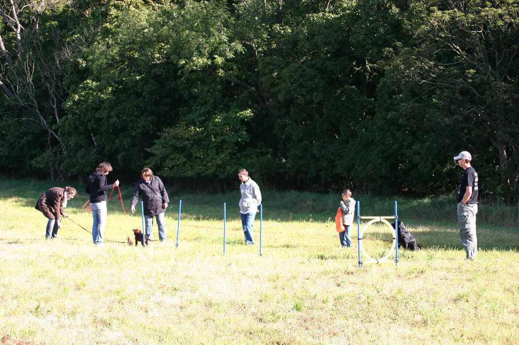 2012-09-23_hundetraining_015