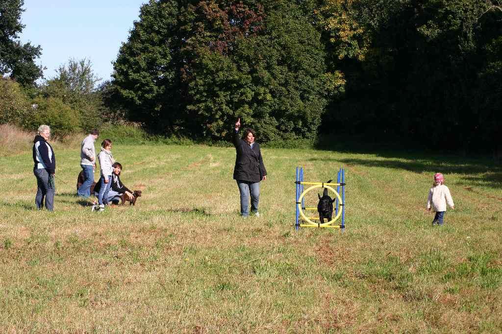 2012-09-23_hundetraining_018