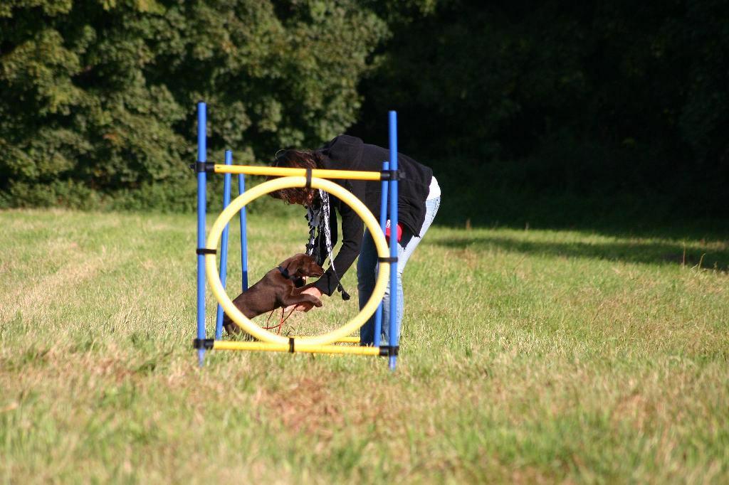 2012-09-23_hundetraining_021