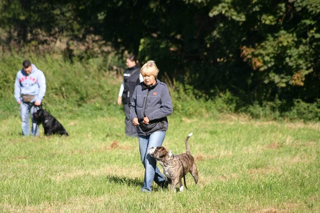 2012-09-23_hundetraining_038