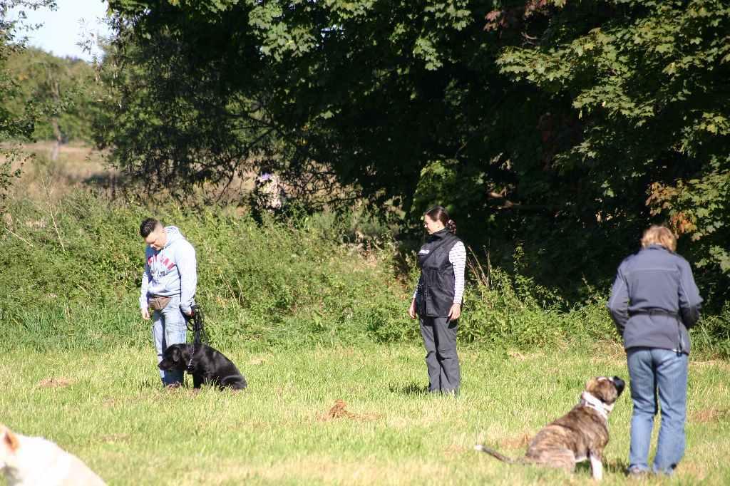 2012-09-23_hundetraining_042