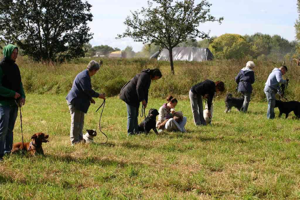 2012-09-23_hundetraining_072
