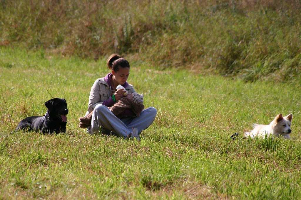 2012-09-23_hundetraining_074