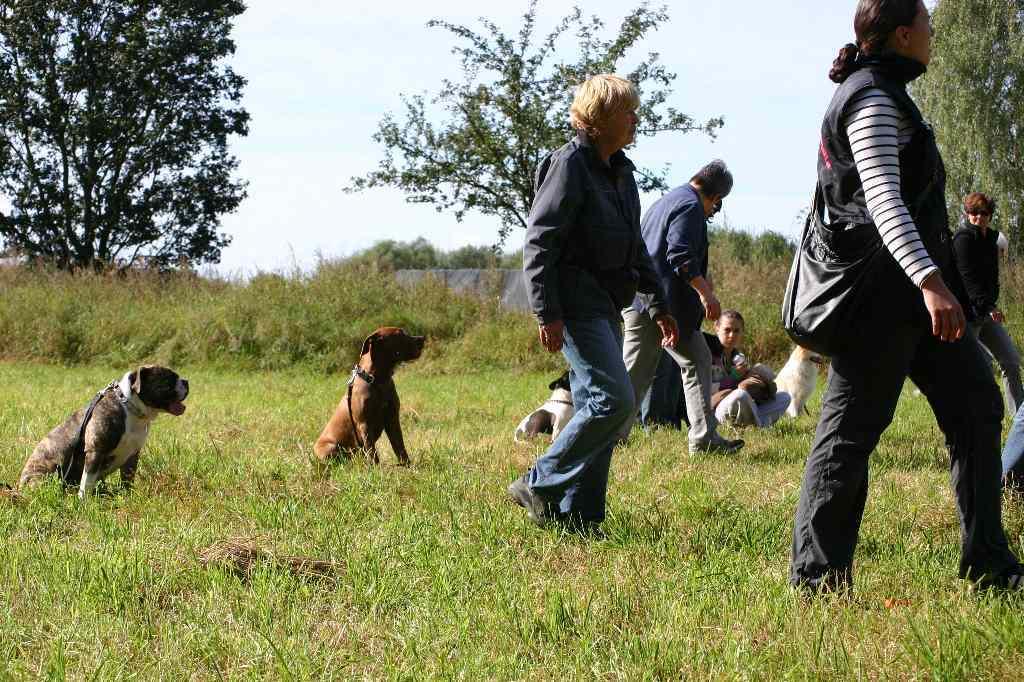 2012-09-23_hundetraining_102