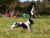 2012-09-23_hundetraining_083