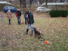 2012-11-25_hundetraining_20