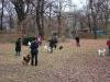 2012-11-25_hundetraining_25