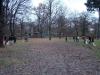 2012-11-25_hundetraining_60
