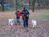2012-11-25_hundetraining_66
