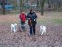 25.11.2012 Hundetraining