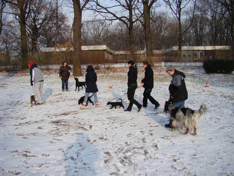 2012-01-29_hundetraining_01