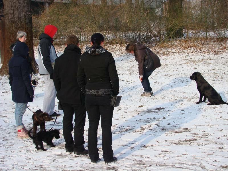 2012-01-29_hundetraining_02
