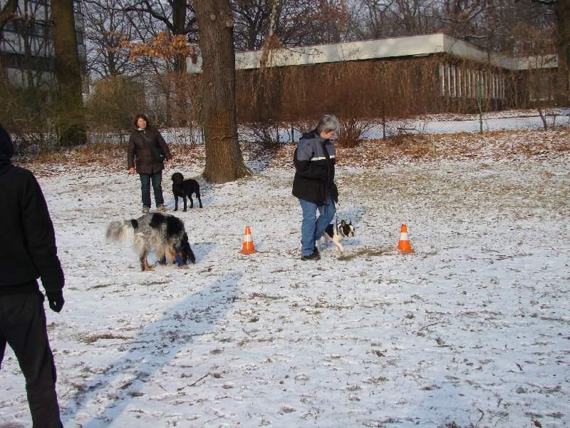 2012-01-29_hundetraining_03