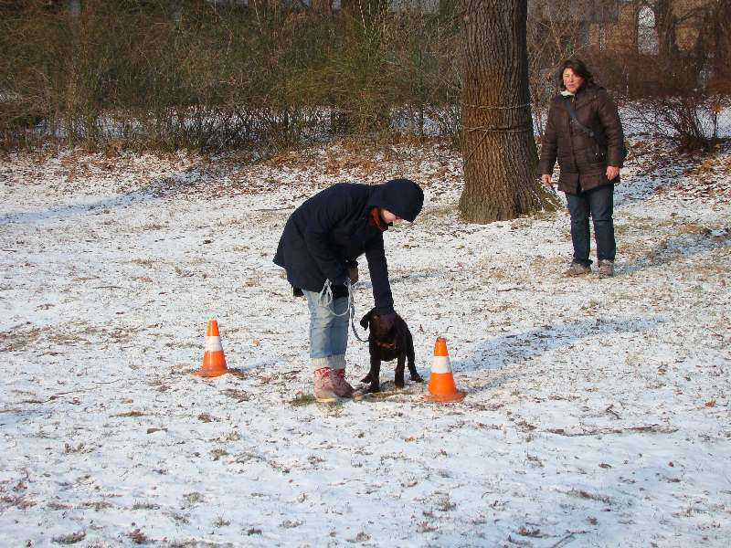 2012-01-29_hundetraining_05