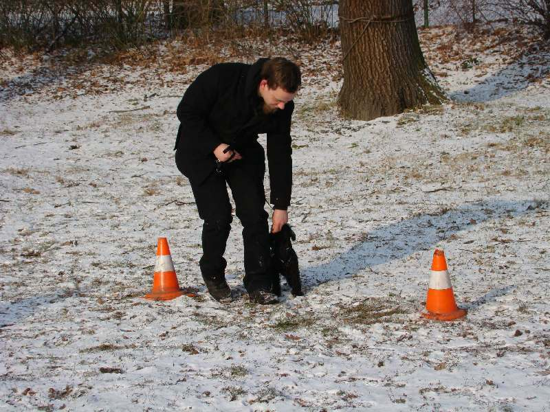 2012-01-29_hundetraining_11