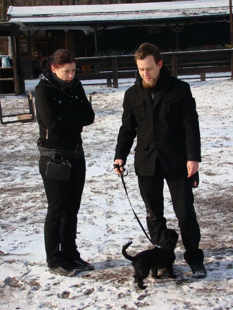 2012-01-29_hundetraining_12