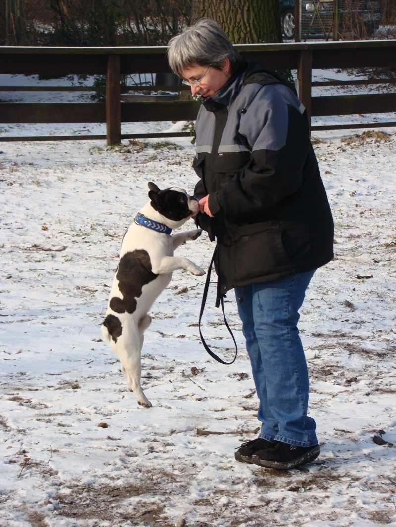 2012-01-29_hundetraining_13