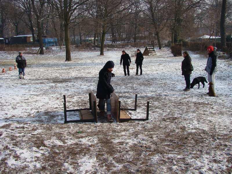 2012-01-29_hundetraining_16