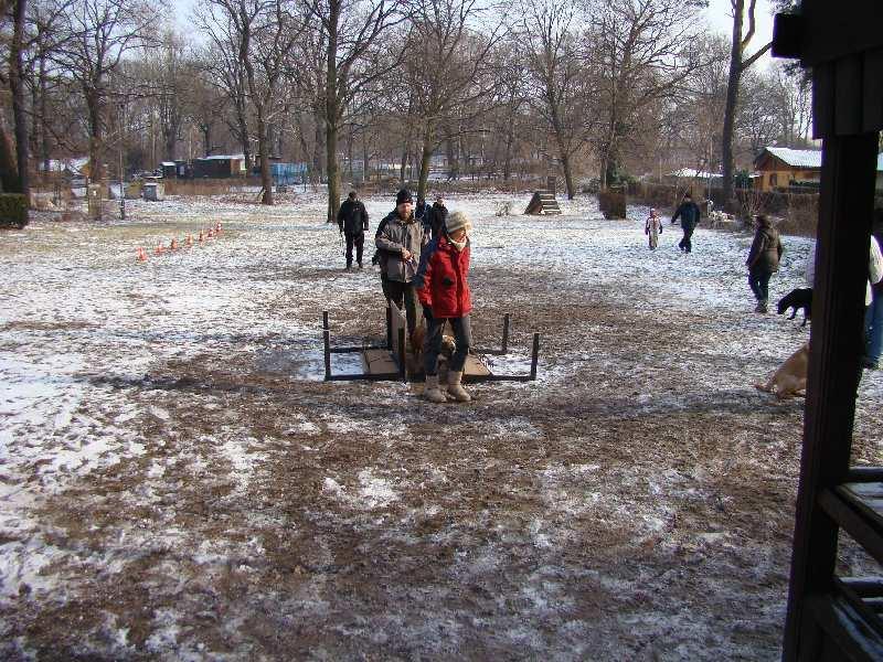 2012-01-29_hundetraining_23