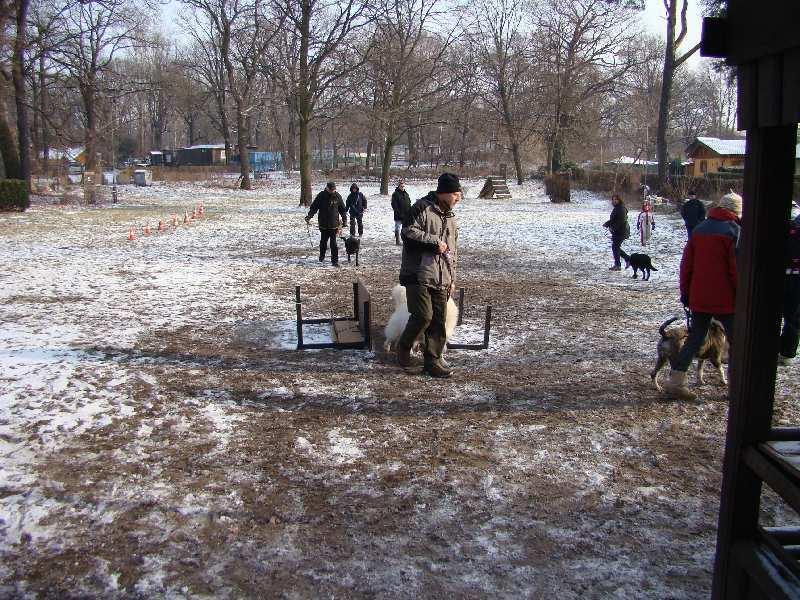 2012-01-29_hundetraining_24