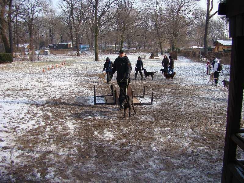 2012-01-29_hundetraining_25