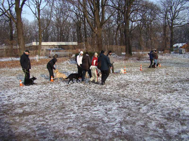 2012-01-29_hundetraining_28