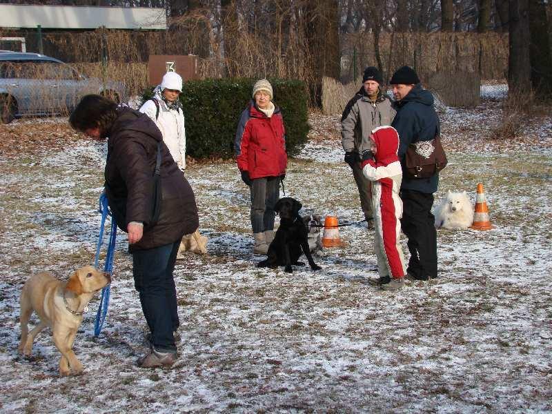 2012-01-29_hundetraining_30