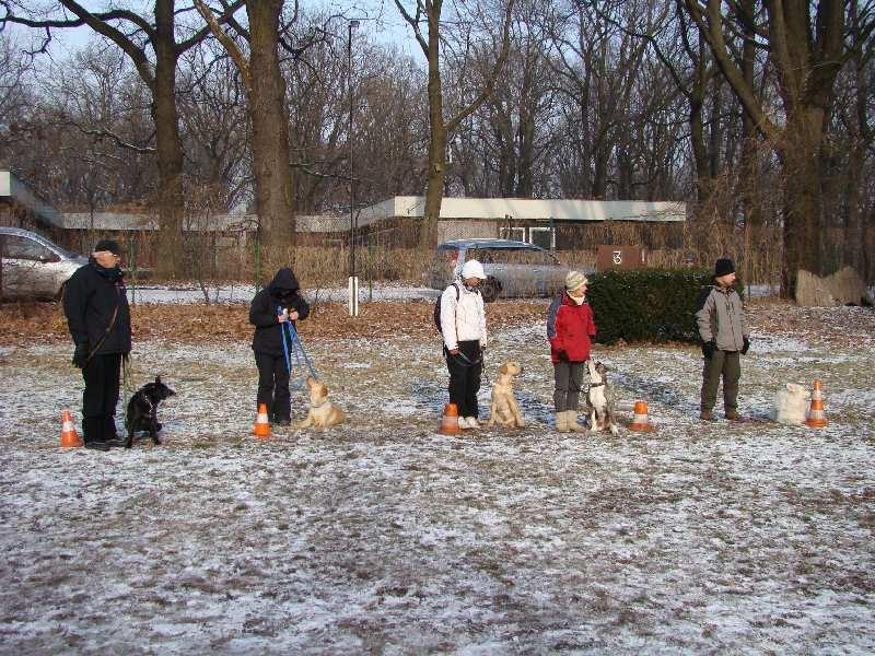 2012-01-29_hundetraining_31