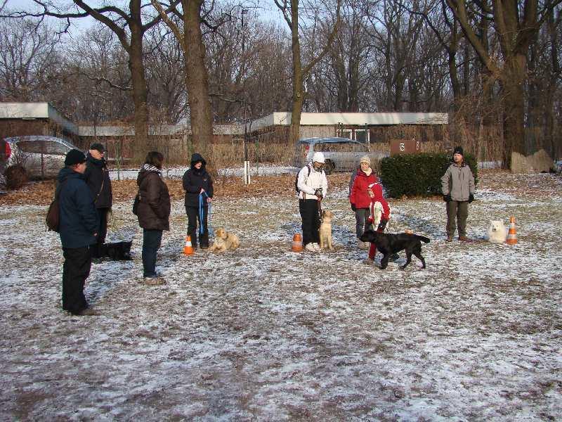 2012-01-29_hundetraining_32