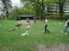 2012-04-29_hundetraining_079